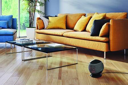 Oscillating PTC Heater & Air Circulating Fan