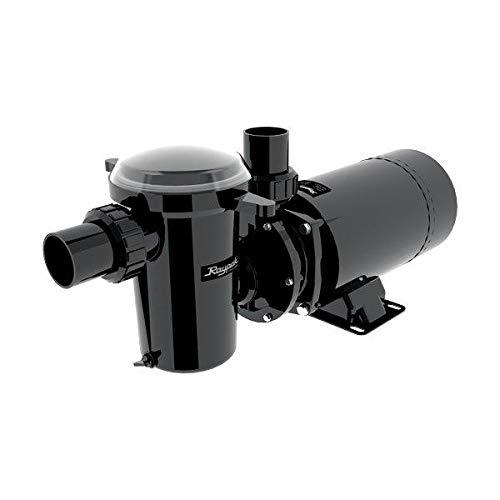 Raypak Protege 1.5 Horsepower Pool Pump