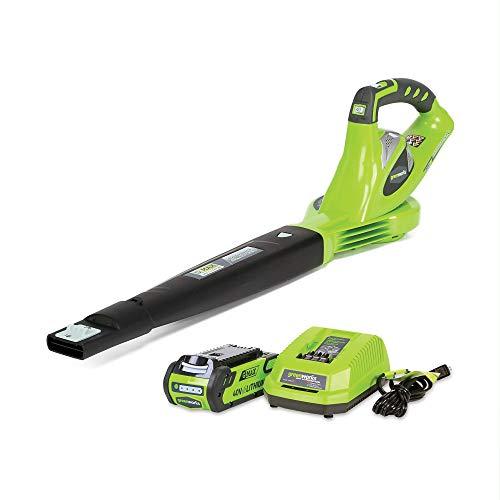 Greenworks 24252 Variable Speed Cordless Leaf Blower