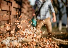 Best Quiet Leaf Blowers