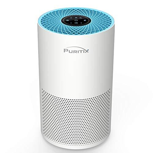 PURITIX Air Purifier with True HEPA, 23dB Quiet Desktop Air Purifier with Timer