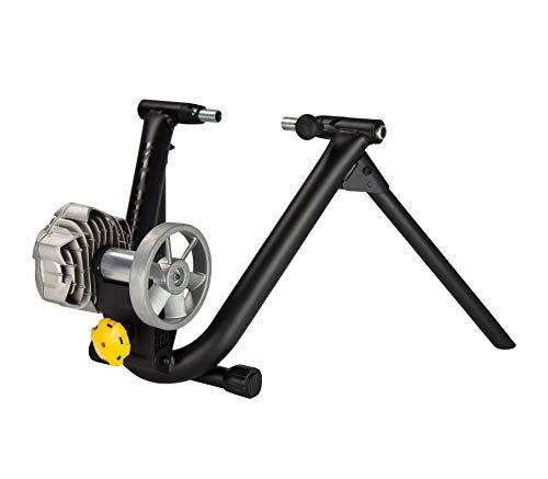 5) Saris CycleOps Fluid2 Indoor Bike Trainer